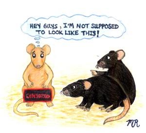 reproducibility mice