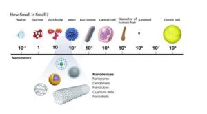 Source: https://www.faseb.org/Portals/2/PDFs/opa/2015/nanoparticles%20horizons%20article.pdf