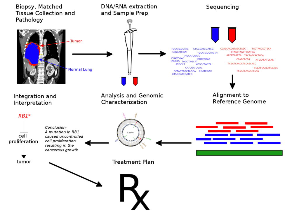 https://upload.wikimedia.org/wikipedia/commons/0/00/Cancer_genome_sequencing_workflow.png