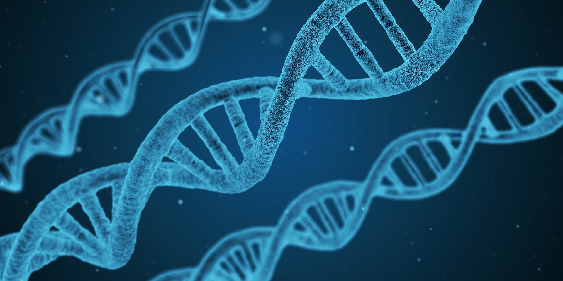 Epigenetics: The Software of the DNA Hardware