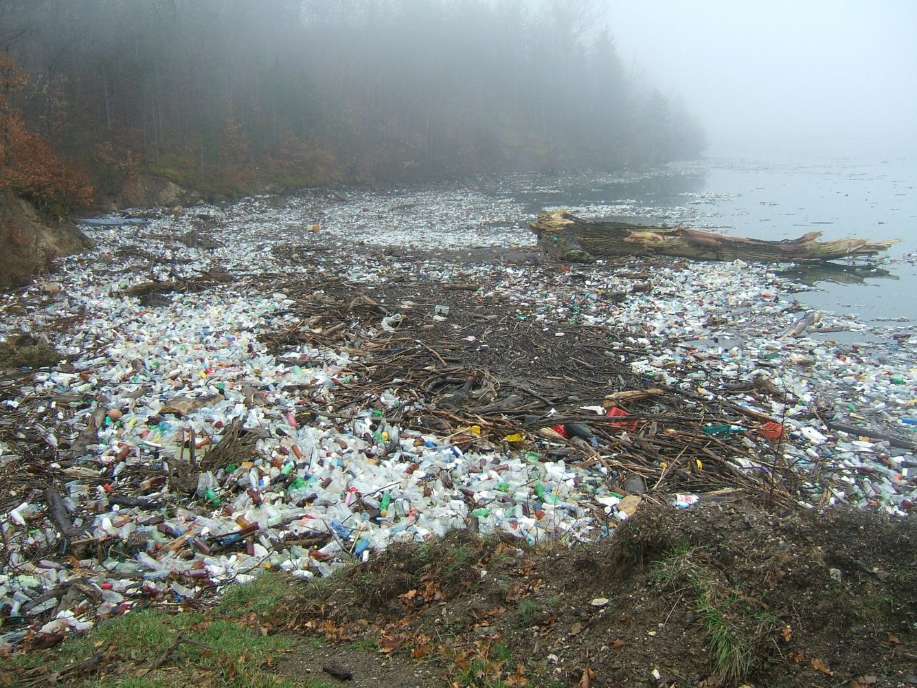 Plastic Waste and the Complexity of Effective Environmentalism
