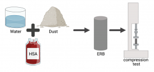 Image depicts components of ERB and a machine used to test strength of ERB