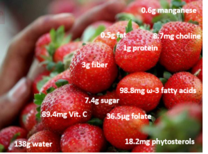 Modified from: https://en.wikipedia.org/wiki/Strawberry
