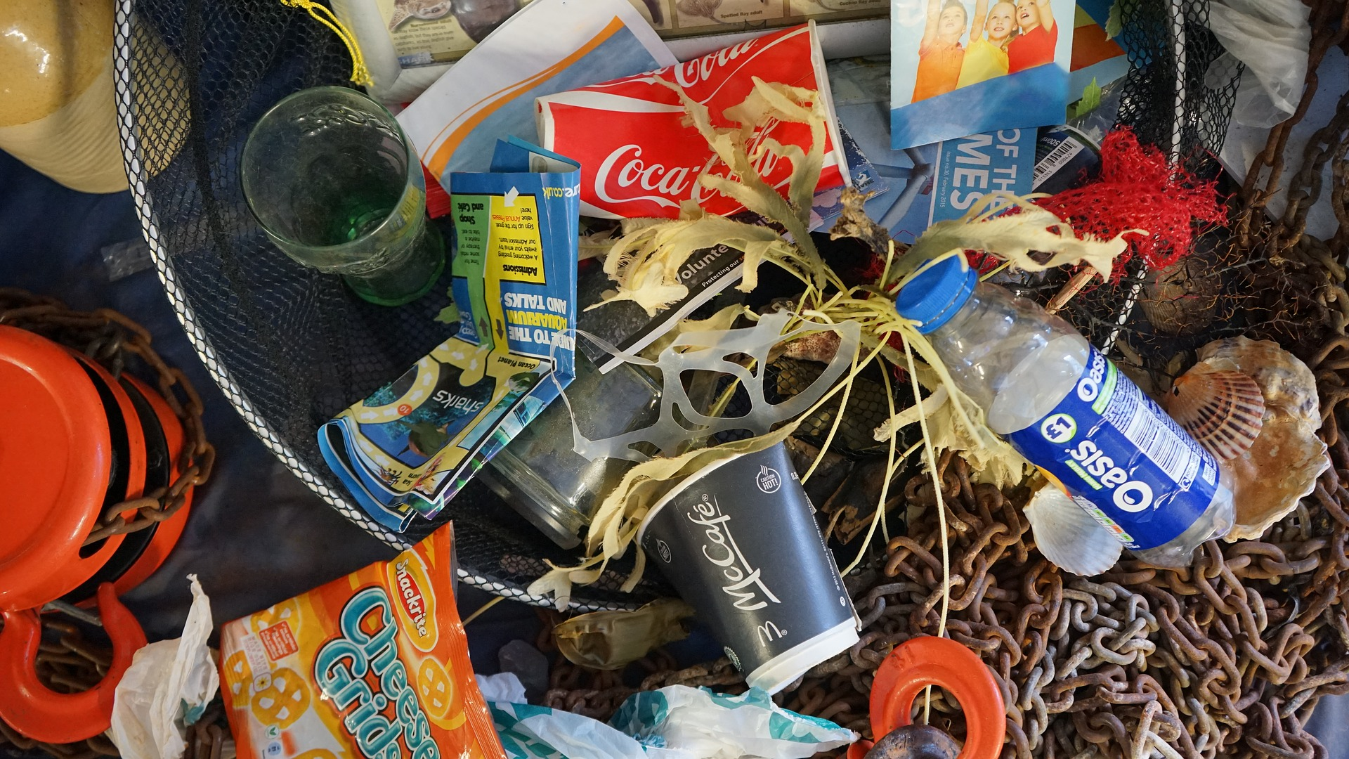 Looking for a New Year's Resolution? Shrink Your Plastic Footprint!