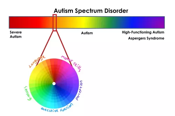 Depiction of ASD aspects at each part of the spectrum courtesy of Rebecca Burgess