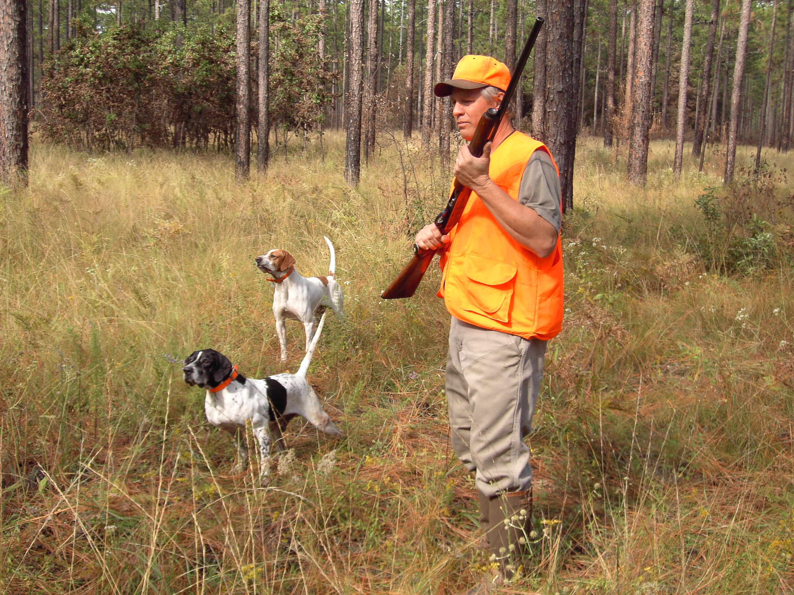 Midterm Election Ballot Amendments: What's up with the Right to Hunt and Fish Amendment?
